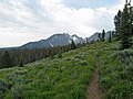 Alpine Way Trial south of Marshall Lake.JPG