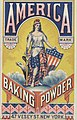 America Baking Powder (3092845663).jpg