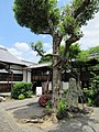 Amidaji Kamigyo-ku 013.jpg
