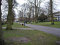 An avenue in Houndwell Park - geograph.org.uk - 1724185.jpg