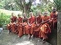 Anuradhapura, Sri Lanka - panoramio (11).jpg