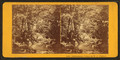 Approach to Ossipee Falls, by Clifford, D. A., d. 1889.png