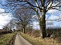 Approaching Trewarlett Cottage - geograph.org.uk - 1732363.jpg