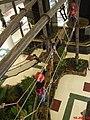 Arborismo no Shoping Plaza Sul - panoramio.jpg