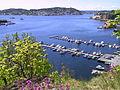 Arendal Byfjorden.jpg