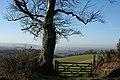 Ashton, Haldon Gate - geograph.org.uk - 686995.jpg