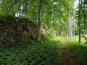 Burtnieki Castle - Image: Asti ordulinnuse müürid 06