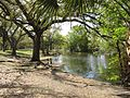 Audubon Park New Orleans Lake.jpg
