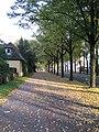 Auf der Herrenhäuser Straße, im Herbst - panoramio.jpg