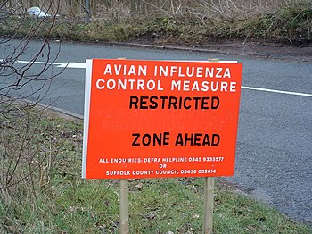 English: Avian Influenza ( Bird Flu ) Sign Avi...