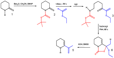 Schematic: synthesis of 6-acetyl-1,2,3,4-tetrahydropyridine