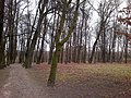 Baltiyskiy rayon, Konigsberg, Kaliningradskaya oblast', Russia - panoramio (15).jpg