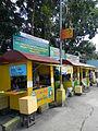Balungao,Pangasinanjf6250 10.JPG