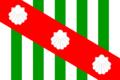 Bandeira-canavieiras.png
