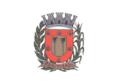 Bandeira de Buritizal.png