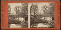 Banks of Cayuga Lake, from Robert N. Dennis collection of stereoscopic views.png