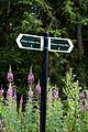 Barham Hill road Elham Valley Way fingerpost in Barham Kent England.jpg