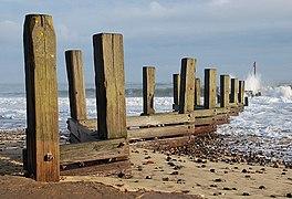 Beach groyne - geograph.org.uk - 1553415.jpg