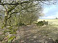 Beaumont Clough Road, Erringden - geograph.org.uk - 1755205.jpg