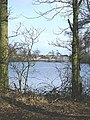 Beaver Pool, Water Orton - geograph.org.uk - 1719776.jpg