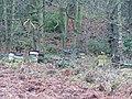 Beehives, Langsett Road South, Oughtibridge - geograph.org.uk - 1082926.jpg