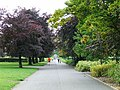 Bellahouston Park - geograph.org.uk - 573938.jpg