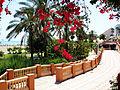 Benalmádena (Málaga) (15174545348).jpg