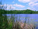 Benton-järvi ja ympäröivät metsät.