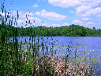 Huron-Manistee National Forests - Benton Lake, near the town of Baldwin in the Manistee National Forest