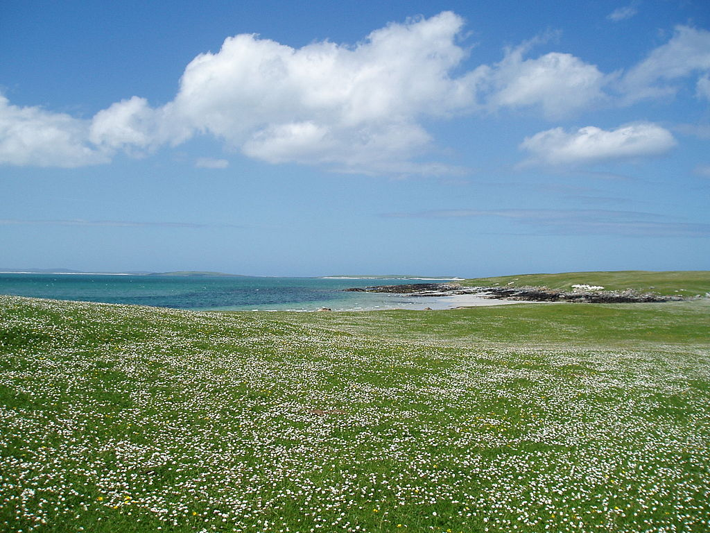 http://upload.wikimedia.org/wikipedia/commons/thumb/6/60/Berneray_Machair_%28hazelisles%29.jpg/1024px-Berneray_Machair_%28hazelisles%29.jpg