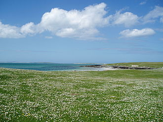 Berneray (North Uist) - The Machair towards the West beach of Berneray