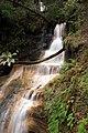 Berry creek falls - panoramio.jpg