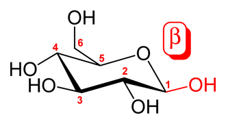 Beta-glucan - Glucose molecule, showing carbon numbering notation and β orientation.