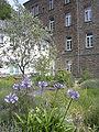 Bibelgarten Marienhaus.JPG
