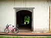 Bici en Guanacaste.jpg