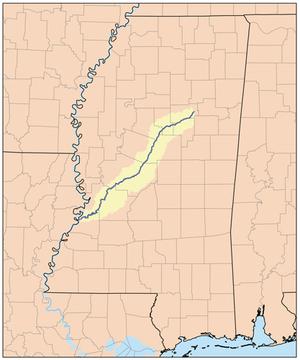 Big Black River (Mississippi)
