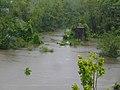 Bike path in Hershey Park after Hurricane Ike (2855263362).jpg