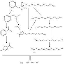 benzalkonium chloride poisoning