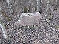 Biržūnai, Lithuania - panoramio (16).jpg