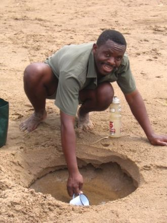 Hluhluwe–Imfolozi Park - A park guide digging for water in the Black Umfolozi River