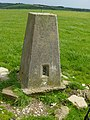 Blackpatch Hill Trig Point. - geograph.org.uk - 12271.jpg