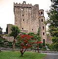 Blarney Castle (16365128975).jpg