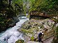 Bled Vintgar-Klamm 23.JPG