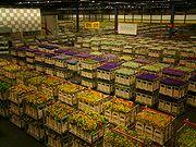 Склад аукциона по продаже цветов в Аалсмере, Нидерланды.