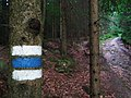 Blue trail from Lipno nV to Guglwald.jpg