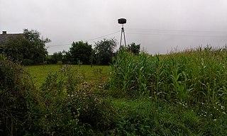 Żołoćki Village in Podlaskie Voivodeship, Poland