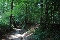 Bois du Pottelberg - Pottelbergbos 09.jpg