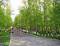 Bor. May Day in Glass Factory Garden.jpg