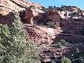 Boynton Canyon Trail, Sedona, Arizona - panoramio (18).jpg