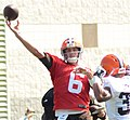 Brian Hoyer 2014 Browns Training Camp.jpg